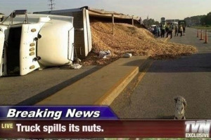 Epic Truck Spill: This Truck is Nuts!