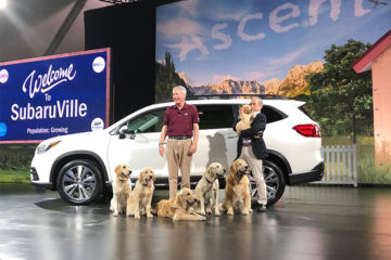 Subaru Ascent with puppies